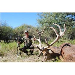7-day Argentina Gold Medal Red Stag and Dove Hunt Two Hunters