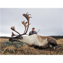10-day British Coulmubia Mountain Caribou Hunt for One Hunter