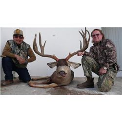 5 1/2-day Mexico Desert Mule Deer Hunt for Two Hunters