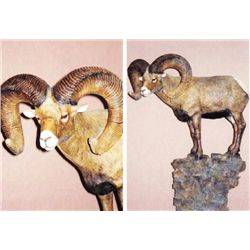 Wildlife Bronze Sculpture