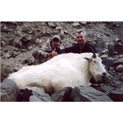 12-day British Columbia Mountain Goat Hunt for One Hunter