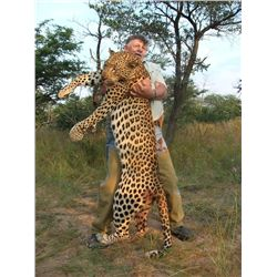 14-day Namibian Leopard Hunt and Taxidermy Credit for One Hunter and One Observer