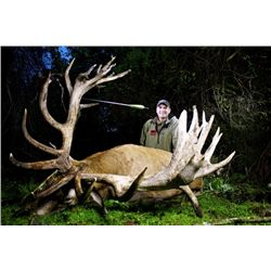 5-day New Zealand Trophy Red Stag up to 525 SCI for One Hunter and One Observer
