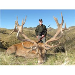 5-day New Zealand Gold-Medal Red Stag Hunt for One Hunter ane One Observer