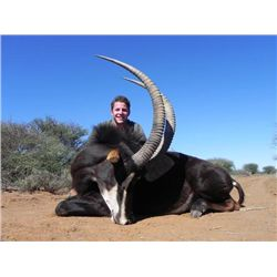 7-day South Africa Sable Hunt for One Hunter and One Observer