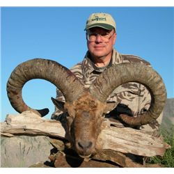 5-day Azerbaijan Eastern Caucasian tur hunt for one hunter