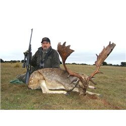 5-day Hunt with Choice of Red Deer, Fallow Deer or Mouflon Sheep Hunt for One Hunter and One Observe