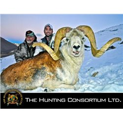 10-day Tajikistan Marco Polo Argali Hunt for One Hunter