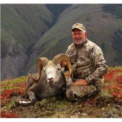 20-day British Columbia Stone Sheep, Grizzly, Moose, Mtn Goat, Caribou and Wolf Hunt for One Hunter