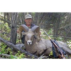 7-day Bighorn Sheep Hunt on the Fort Belknap Indian Community Reservation with Redbone Outfitting