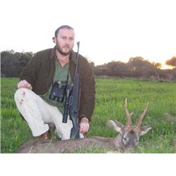 5-day European Roe Deer and Wild Boar Hunt in Spain for One Hunter and One Observer