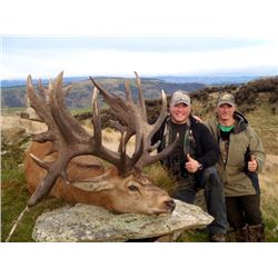 5-day New Zealand Red Stag up to 340 SCI Hunt for One Hunter and One Observer