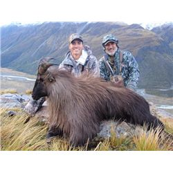 5-day New Zealand free-ranging Tahr and Chamois Hunt for One Hunter and One Observer