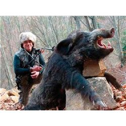 5-day Bulgaria Eurasian Wild Boar and Turkey Hunt For One Hunter and One Obsever