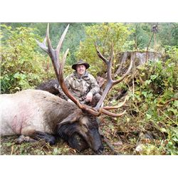 10-day Vancouver Island Archery Roosevelt Elk Hunt for One Hunter