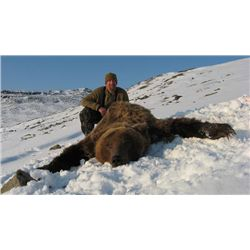 10-day Kamchatka Brown Bear Hunt for One Hunter