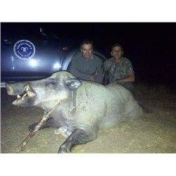 3-days Turkey Eurasian wild boar hunt and 2 days VIP sightseeing for 1 hunter and 1 observer