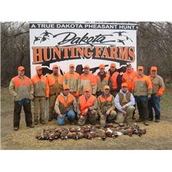 2 1/2-day/3-night South Dakota Pheasant Hunt for One Hunter
