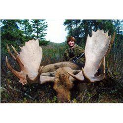 10-day Yukon Trophy Moose Hunt for One Hunter
