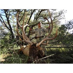 Arizona Fort Apache Reservation 92-day Chairman's Rocky Mountain Elk Tag
