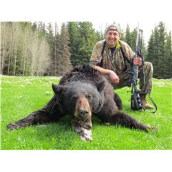 5-Day Black Bear Hunt for One Hunter in British Columbia
