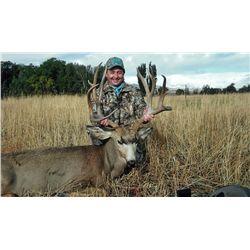 4-Day Mule Deer Hunt for One Hunter in Utah - Includes Trophy Fee