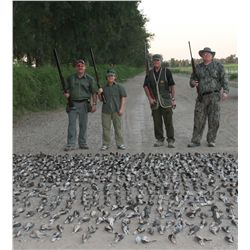4-Day/3-Night Dove Hunt for Four Hunters in Argentina