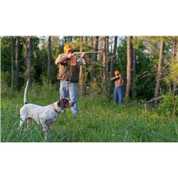 2-Day/3-Night Private Quail Hunt for Four Hunters in Alabama - Includes 3 Hours Private Air Charter