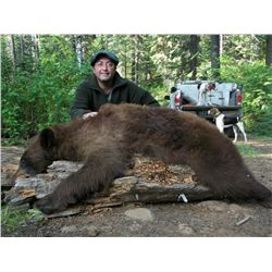 5-Day Spring Bear Hunt for One Hunter in Idaho