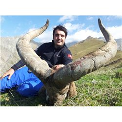 5-Day Eastern Dagestan Tur Hunt for One Hunter in the Republic of Azerbaijan - Includes Trophy Fee