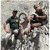 Image 3 : 5-Day Eastern Dagestan Tur Hunt for One Hunter in the Republic of Azerbaijan - Includes Trophy Fee