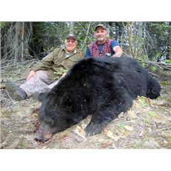 8-Day Black Bear Hunt for One Hunter in the Yukon Territory - Includes Trophy Fee