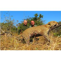 14-Day Leopard Hunt for One Hunter in Mozambique - Includes Trophy Fee