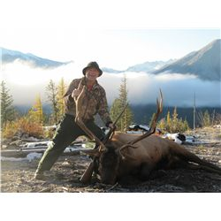 7-Day Elk Hunt for One Hunter in British Columbia