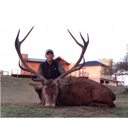 7-Day Big Game Hunt for Two Hunters and One Non-Hunter in Argentina - Includes Trophy Fees