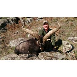 4-Day Beceite Ibex Hunt for One Hunter in Spain - Includes Trophy Fee Credit