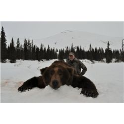 10-Day Alaska Brown Bear and Wolf Hunt for One Hunter - Includes Trophy Fees and Fishing Opportuniti