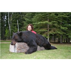 5-Day Black Bear Hunt for One Hunter and One Non-Hunter in Saskatchewan, Canada