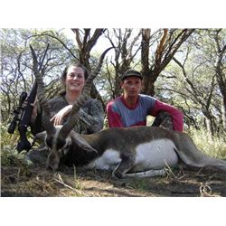 4-Day Blackbuck and Pampas Ram Hunt for Two Hunters in La Pampa, Argentina - Includes Trophy Fees