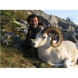 10-Day Fannin or Dall Sheep Hunt for One Hunter in the Northern Yukon Territory - Includes Trophy Fe