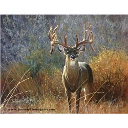 """They Make 'Em Big in Texas"" - Original Painting by Wildlife Artist Jan Martin McGuire"