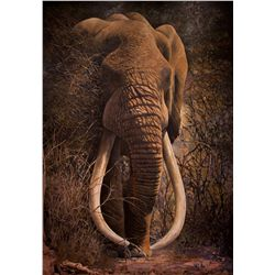 """Ahmed"" - Life-Size Original Oil On Canvas Elephant Painting by Renowned African Artist Dawie Fourie"