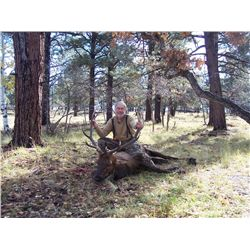 5-Day Big Game Hunt for Two Hunters and Two Non-Hunters in Colorado
