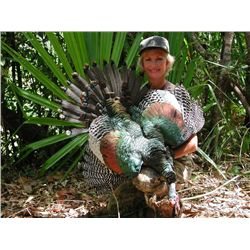 7-Day Campeche Jungle Hunt for Two Hunters in Mexico - Includes Trophy Fees