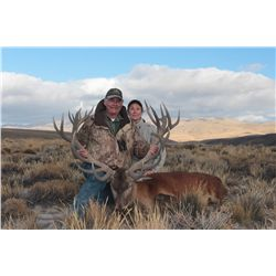 5-Day Red Stag Hunt for One Hunter and One Non-Hunter in Argentina - Includes Trophy Fee
