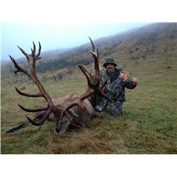 SPECIAL DREAM ADVENTURE-4: 4-Day Red Stag and Tahr Hunt for Two Hunters in New Zealand – Includes Tr