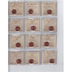 Lot of Twelve ICCS Graded One Cents