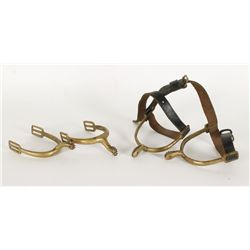 (2) Pairs of Spurs