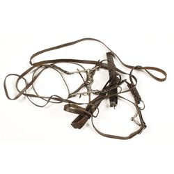 Model 1912 Officers Bridle & Watering Headstall