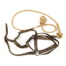 Model 1904 Halter Rope Snap